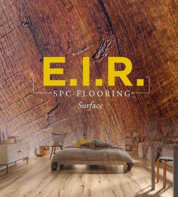 EIR là gì?